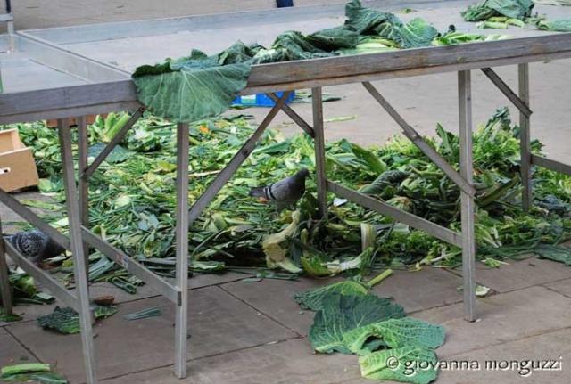 verdure-spazzatura-w