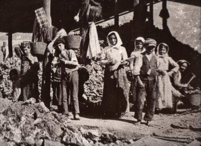minatoriBaggerru