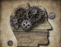 La leggenda dell'uso del 10% del nostro cervello