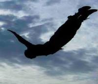 Volare: il sogno di sempre