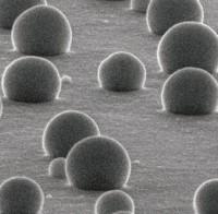 Nanotecnologie contro l' Alzheimer