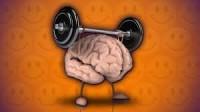 Homo sapiens: tutto cervello e niente muscoli