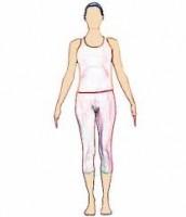 La postura: il corpo macchina perfetta
