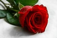 San Valentino e il miracolo più grande