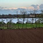 Agricoltura in Brianza