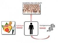 Dieta e genoma