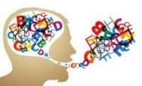 Normatività semantica e riferimento