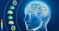 Alzheimer e neuroinfiammazione