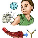 salute vaccini