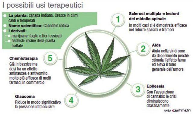 I possibili usi terapeutici della cannabis (134mm x 80mm)