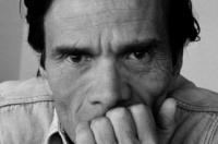 C'era una volta un poeta : Pier Paolo Pasolini