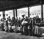 Copertina-Migranti-A-Ellis-Island-1892