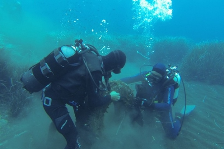 Spazzapnea, gara di raccolta subacquea di rifiuti