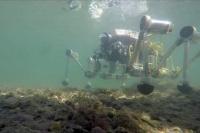 Il robot mangiaplastica, netturbino dei mari
