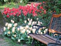 I racconti del melograno: i giardini di maggio