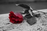 In memoria di due giovani vite