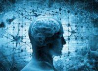 Rigenerare il cervello tra finzione e realtà