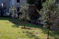 Nel convento 'green' di Monza