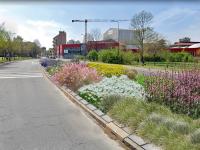 Depaving: Milano è sempre più verde
