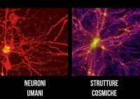 Cervello e universo a confronto