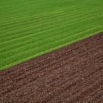 greeneconomy-1_web