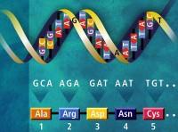 Scienza e società: la nuova biologia a DNA espanso