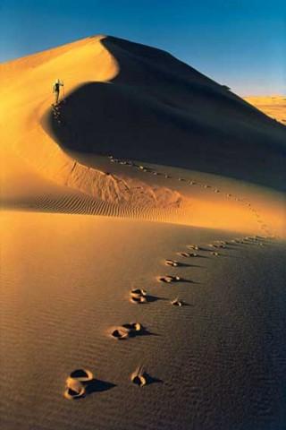 Deserto del Namib, Namibia. AprileMaggio 1972