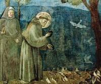 Giotto, il padre della pittura italiana