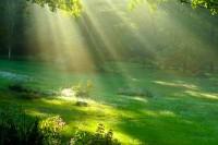 Facciamoci attraversare dall' energia della vita: il qi