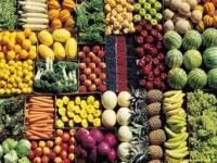 Partendo da Expo: riflessioni sull'alimentazione