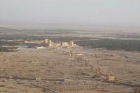 Salviamo Palmira la regina del deserto