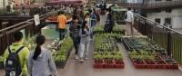 Impact Farm: una serra in città