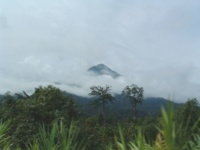 Mount Cameroon Race of Hope