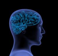 Gli impensabili limiti del cervello