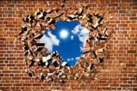 La cultura abbatte i muri