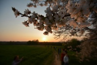Racconti di primavera N°6