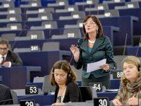 Uno sguardo alle prossime elezioni europee
