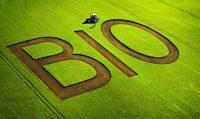 L'agricoltura in Danimarca: obbiettivo 100% bio