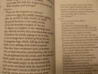 Una lettura per l'estate: il Sogno di Shakespeare