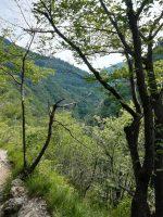 En plein air: camminata da Erve a Capanna Monza