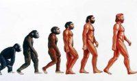 Il vantaggio di chiamarsi Sapiens